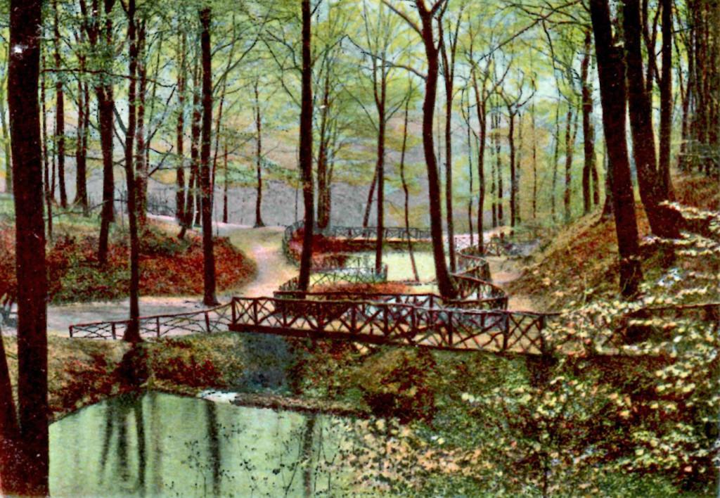 Mirker Hain 45 1904 (Dibi)überarbeitet